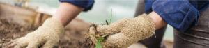 costruire-settore-agricoltura